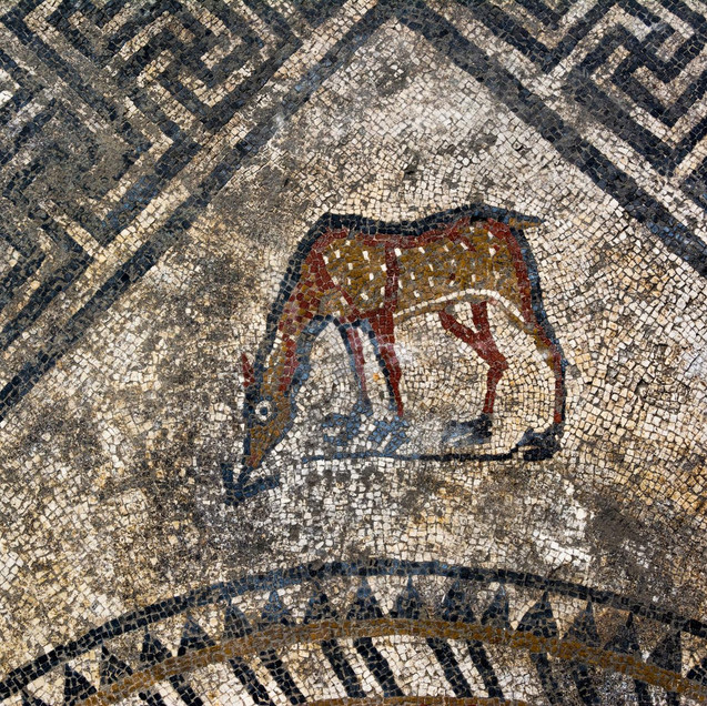 Mosaic of a Doe in Uzès Ucetia