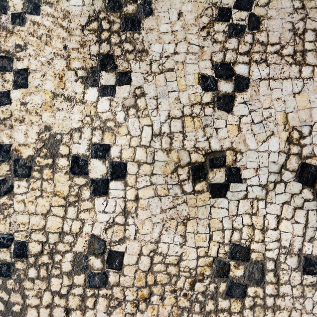 a Mosaic of Ucetia