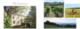 Chasses en Gascogne des séjours de chasse sur mesure dans le Gers, tir d'été et d'hiver du chevreuil