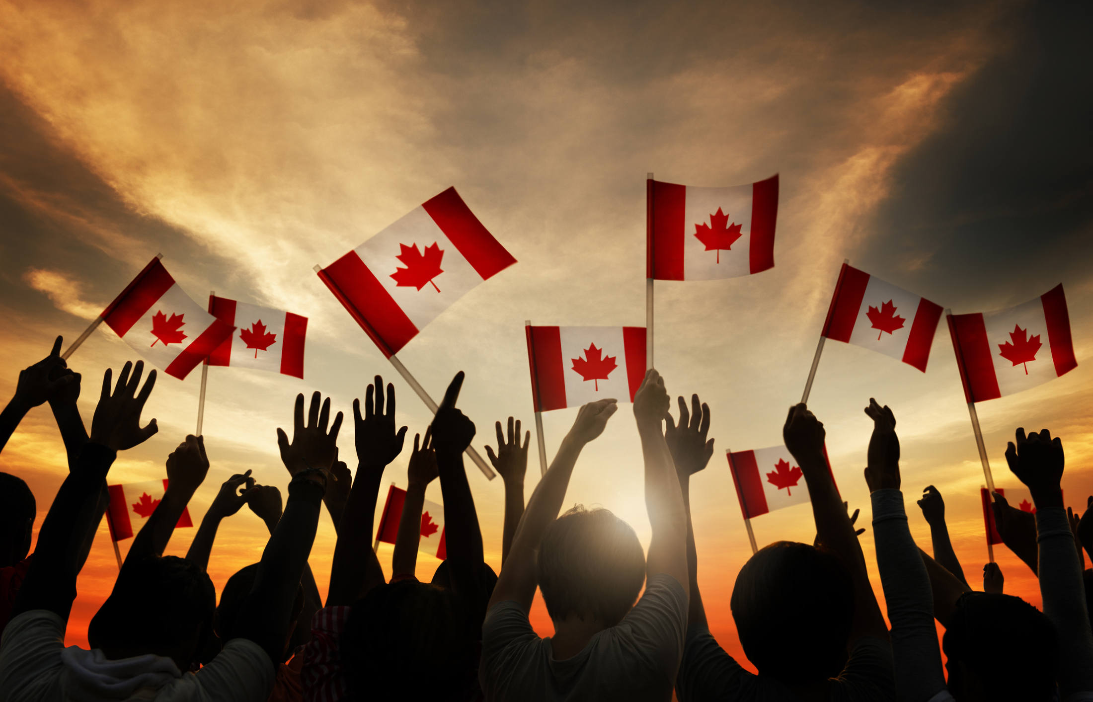 CISPI ca -- Canada International Student Placement Inc