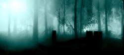 blue mood misty morning