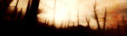 colour fields burn