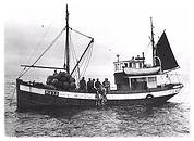 MK Strandheim på sildefiske i 1952