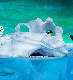 Arktis-illustrasjon-Andre-M-709x443.jpg