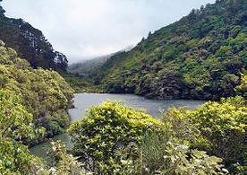 Zealandia credit Susana Ou.JPG