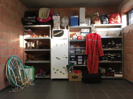 Kan jouw garage een beetje meer structuur gebruiken?