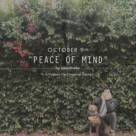 Peace of Mind - 10.9 Promo Image.jpeg