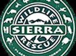 SWR-header35_logo-copy.png