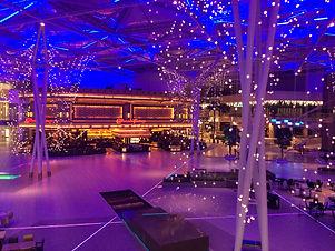 Event venue for special christmas even