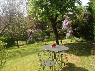 The garden of La Colline