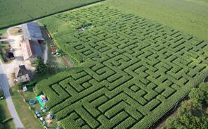 Labyrinth de l'Ermite