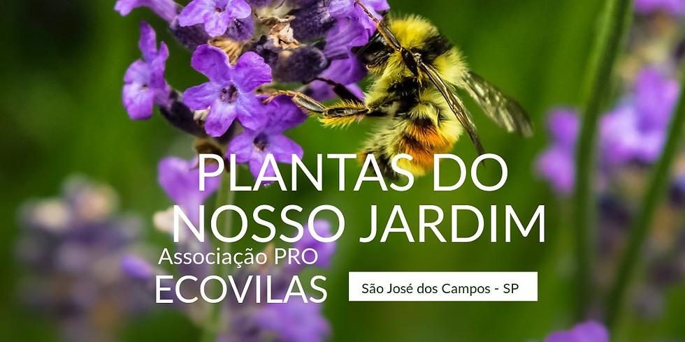 Oficina: Plantas do Nosso Jardim | Associação PRÓ Ecovilas S.J.C/SP