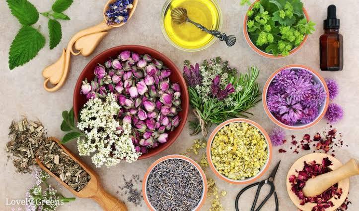 Aromaterapia para o lar