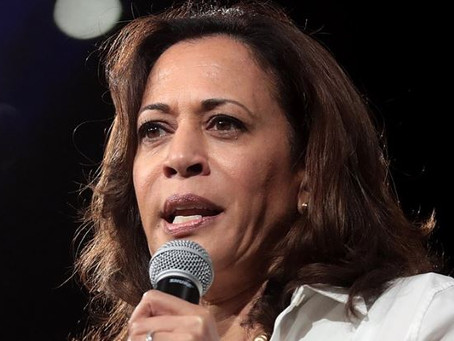 Constitutional Scholar Nails Kamala Harris on Blatant 'Violation of Federal Law'