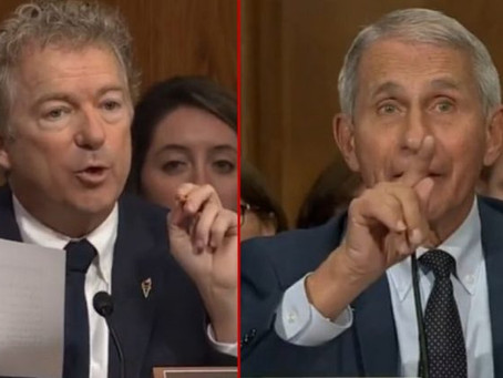 Newly Released 900 Pages in Docs Show Rand Paul Was Right: Fauci Lied About Wuhan-Lab Funding