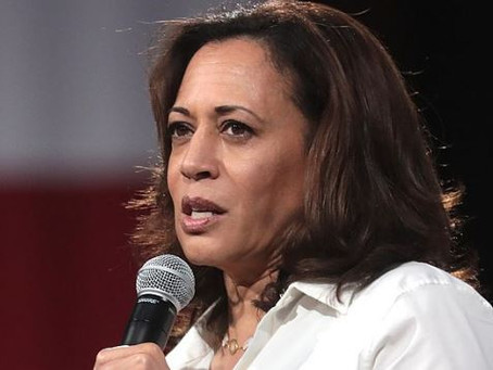 Kamala Harris Staffers Tell All, Fearful of Her Wrath, 'Terrified' She May Become President