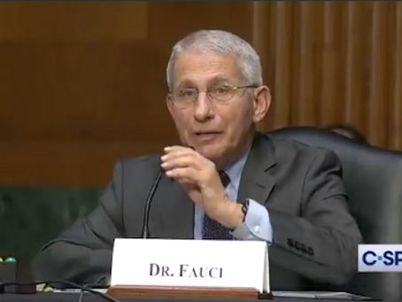 Fauci Squirms After Rand Paul Asks Him Directly about Funding Wuhan Lab