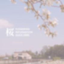 Entsuujisakura.jpg