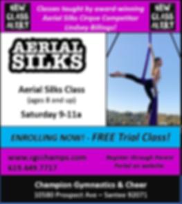 Aerial Silks NOV 2019.png