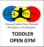 Toddler Open Gym.png