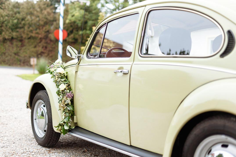 Käfer grün Auto