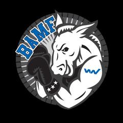 Window Nation BAMF Logo
