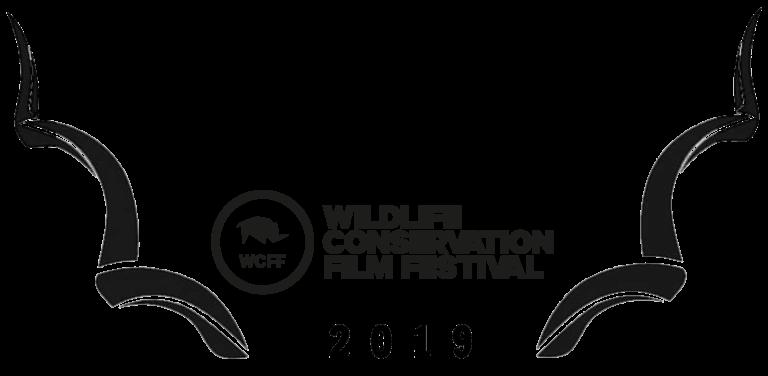WCFF2019-Award-Oceans-768x376.png