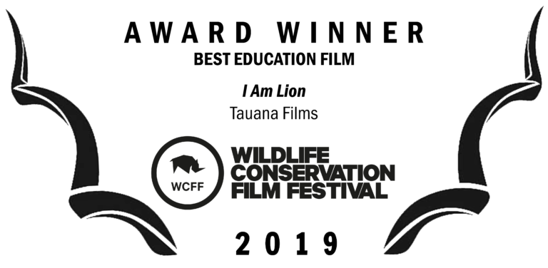 WCFF2019-Awards-Education-768x376.png