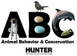 thumbnail_Hunter%20and%20ABC%20logo_edit