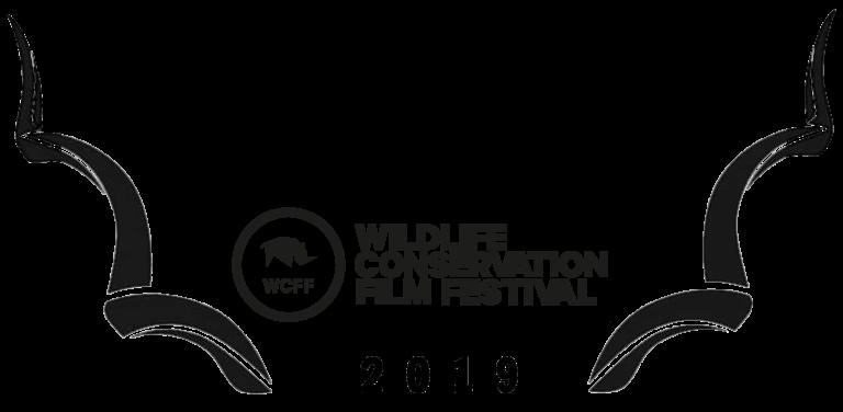 WCFF2019-Awards-Amateur-768x376.png