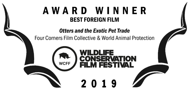 WCFF2019-Award-Foreign-768x376.png