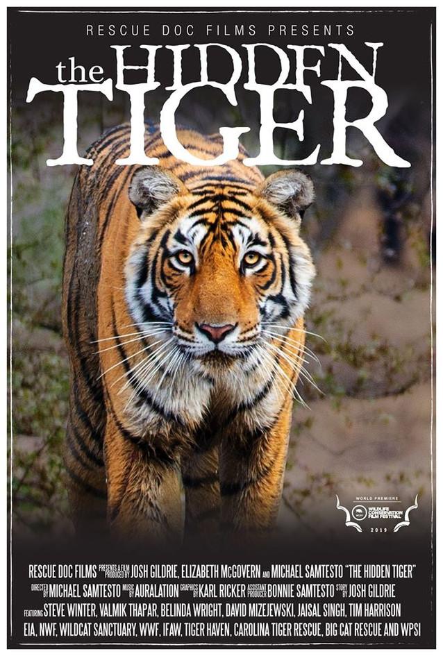The Hidden Tiger.jpg