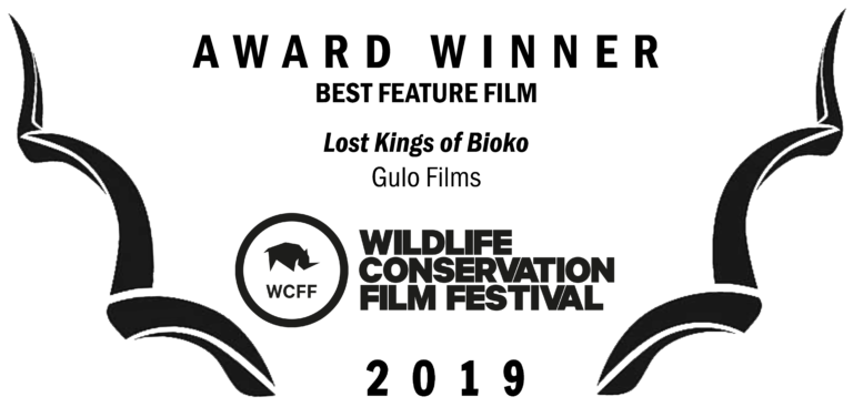 WCFF2019-Awards-Feature-768x376.png