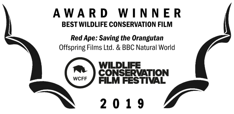 WCFF2019-Award-Conservation-768x376.png
