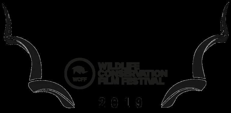 WCFF2019-Award-Ecosystem-768x376.png