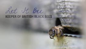 Let it bee.jpg