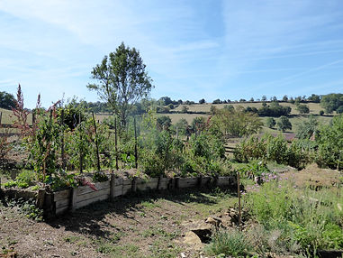 Potager Terre Amoureuse.JPG