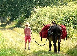 Terre Amoureuse - Bougre d'âne.jpg