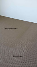 carpet cleaned by a professional in Port Macquarie