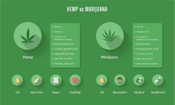 What's the Difference Between Hemp and Marijuana?