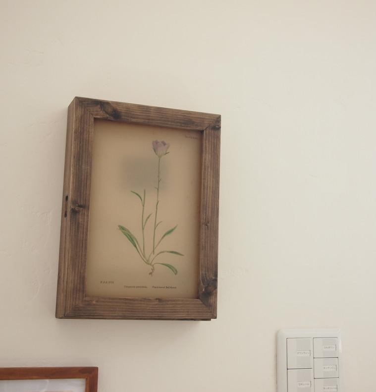 IN-01植物図手採色のアンティークペーパー
