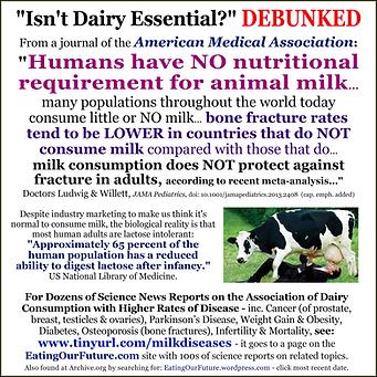 dairy-debunked-meme-not-necessary-v01c-1