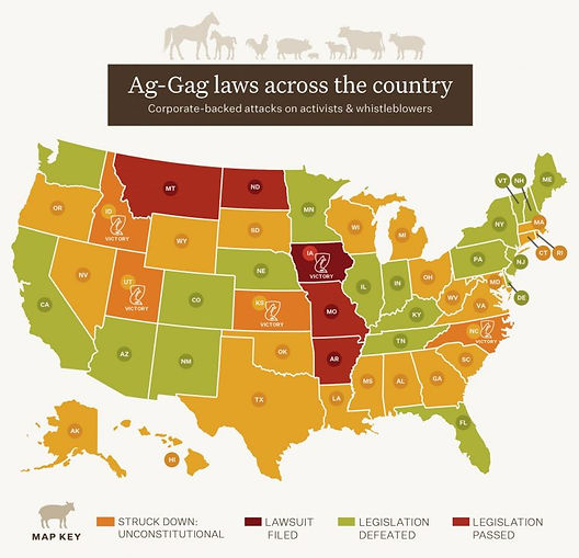 2020-493-Ag-Gag-Map-for-WEBSITE-page-Nor