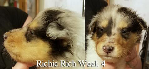 Richie Wk 4.jpg