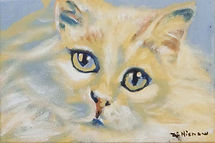 Catnip Reverie (6 x 9) oil on canvas.jpg
