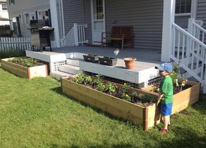 Pemberton; Grow Your Own Food!