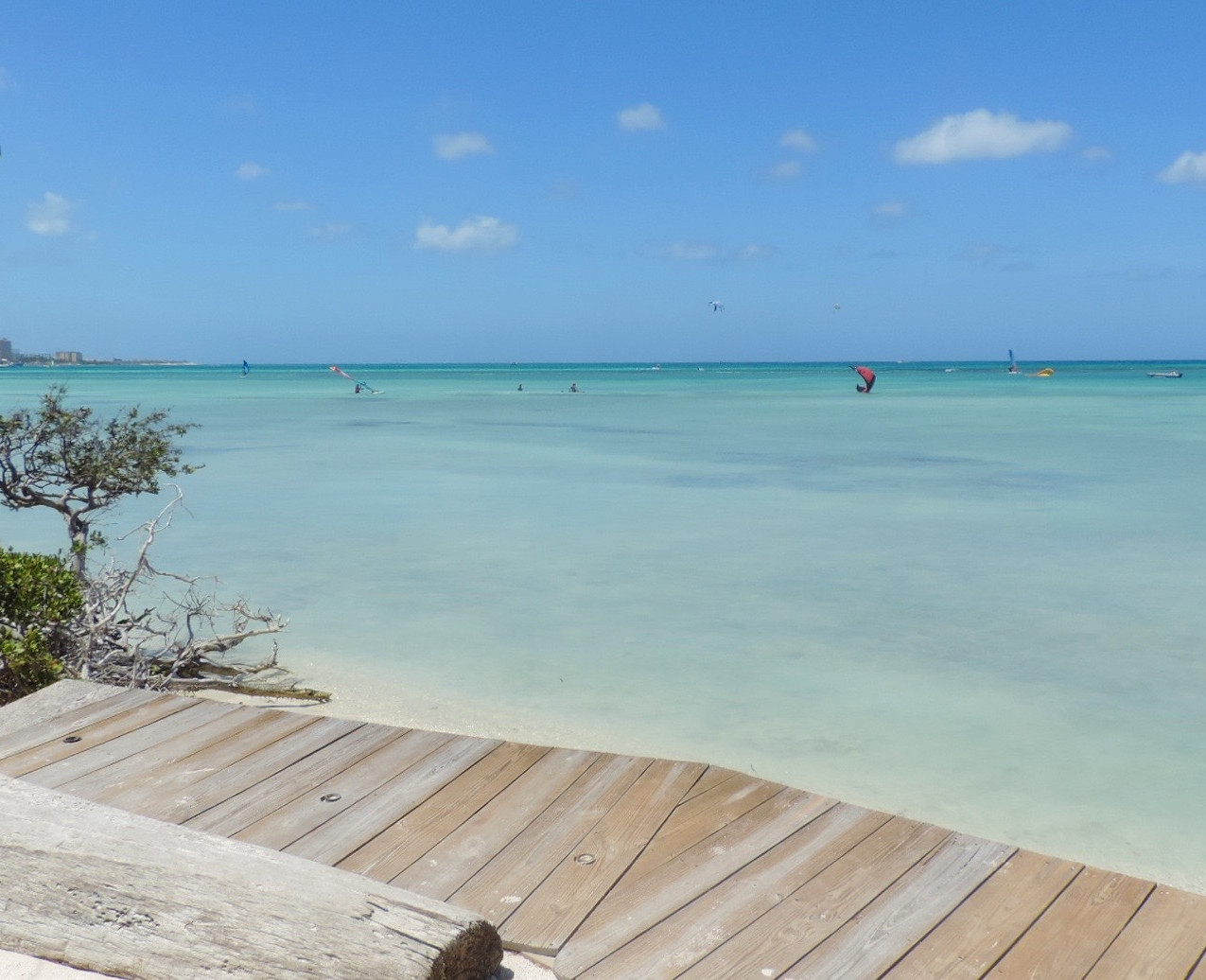 Spot Aruba
