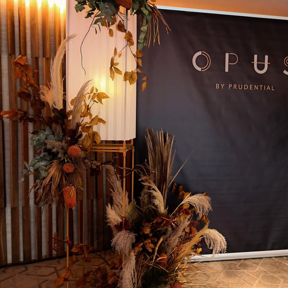 OPUS Mid Autumn