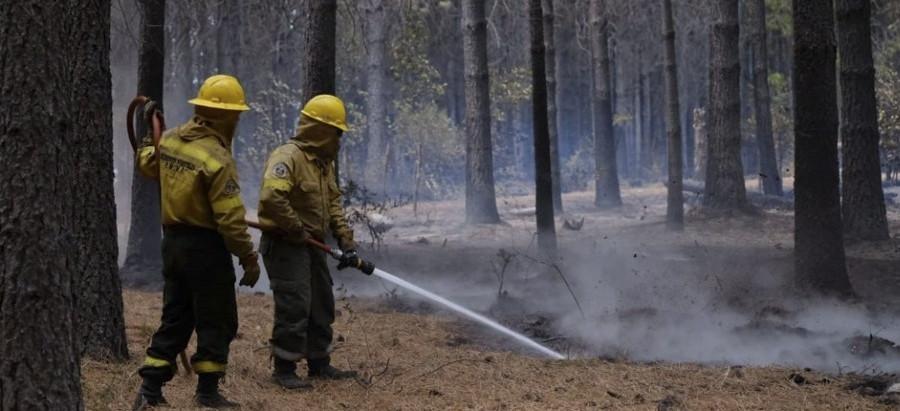 Chubut: continúan los esfuerzos para sofocar los incendios