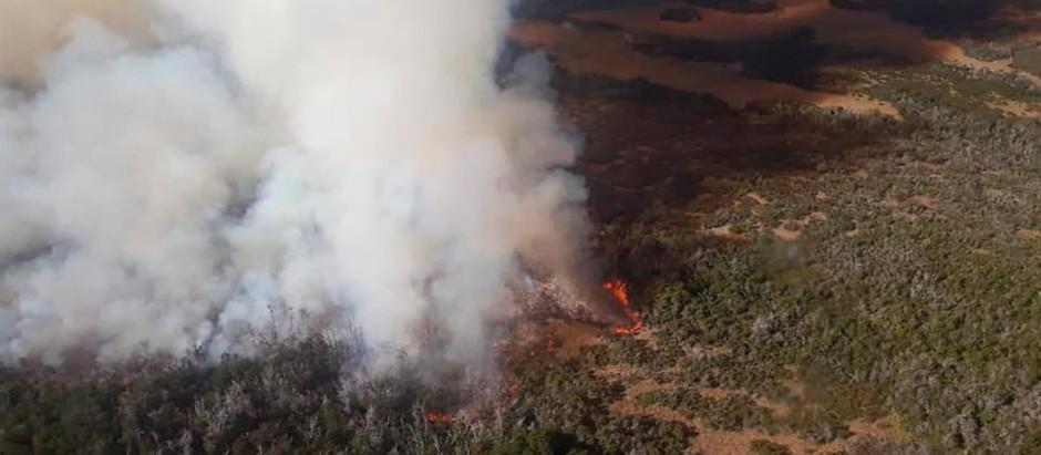 Continúan activos focos de incendios en Río Negro y Chubut